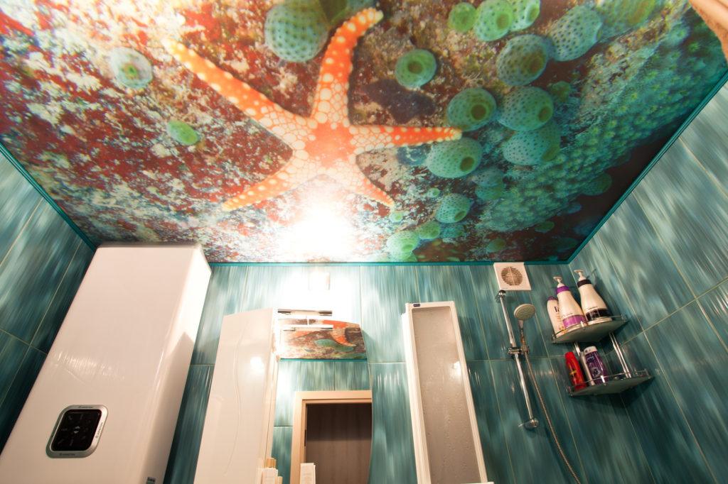 Натяжной потолок с фотопечатью в ванну